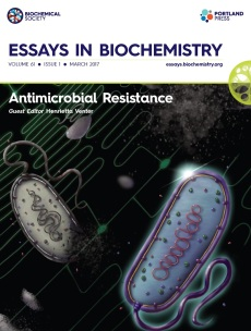 essays_61_1_cover.indd